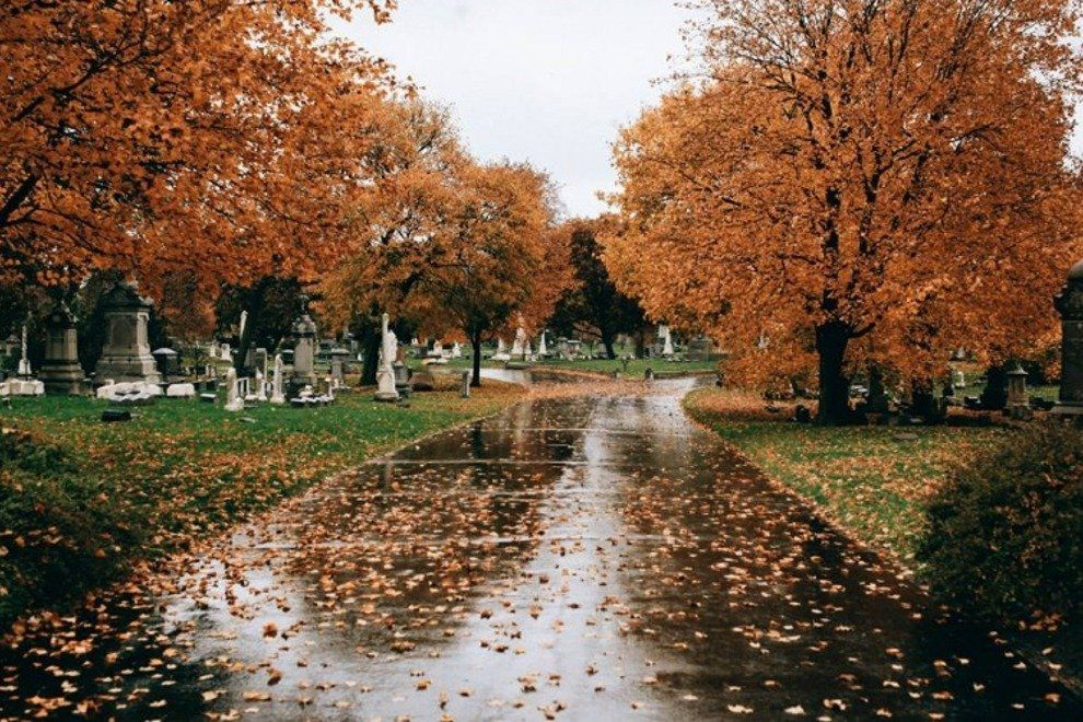 Graceland Cemetary In Fall