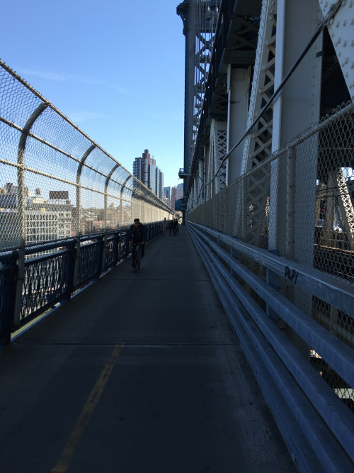 On The Waterfront: From Dumbo to Williamsburg | Citi Bike NYC